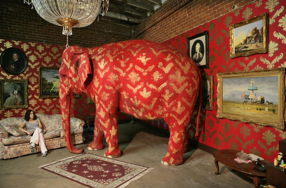 "Tai, Banksy's ""elephant in the room"". Photograph: Damian"